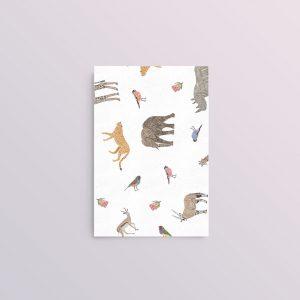 Wild_Card_