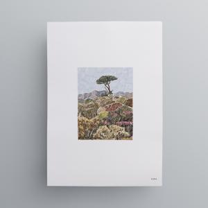 Namaqua-Print