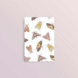 Moth_Card_